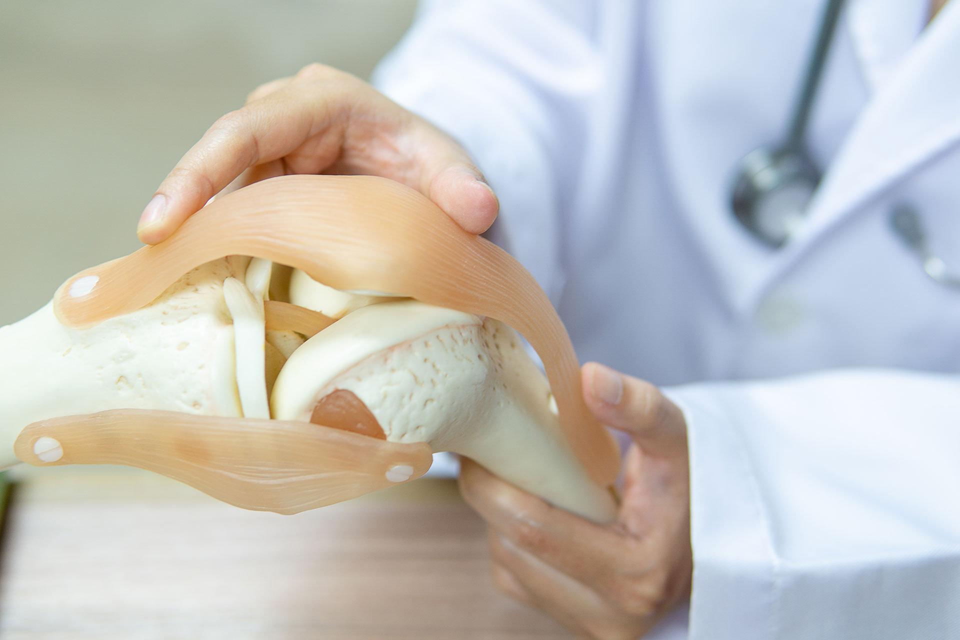 Stella Maris Ortopedia Protesica